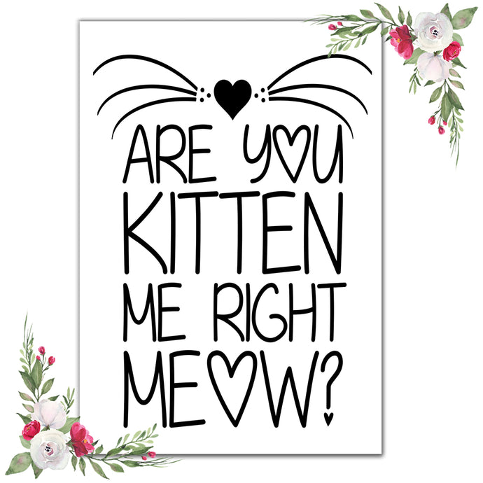 Are you kitten me!