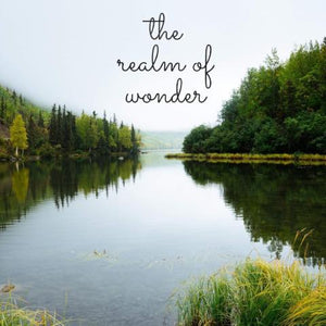 The Realm of Wonder - 7/13/18