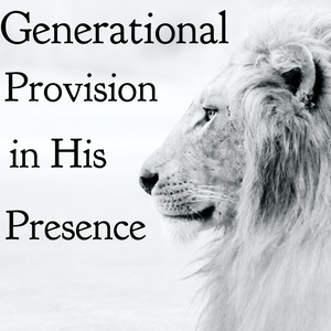 Generational Provision in His Presence (Prophetic Word & Ministry with Bill Weinkauff) - 10/25/20