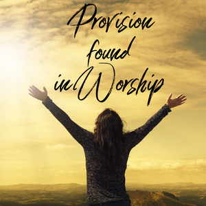 Provision found in Worship - 1/17/21