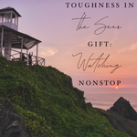 Toughness in the Seer Gift: Watching Nonstop - 10/1/19