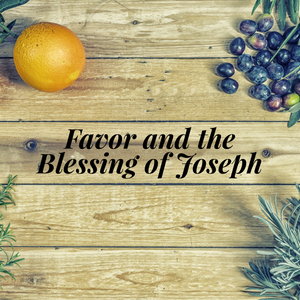 Favor and the Blessing of Joseph - 1/15/19