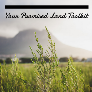 Your Promised Land Toolkit - 8/9/19