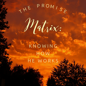 The Promise Matrix: Knowing How He Works - 5/3/19