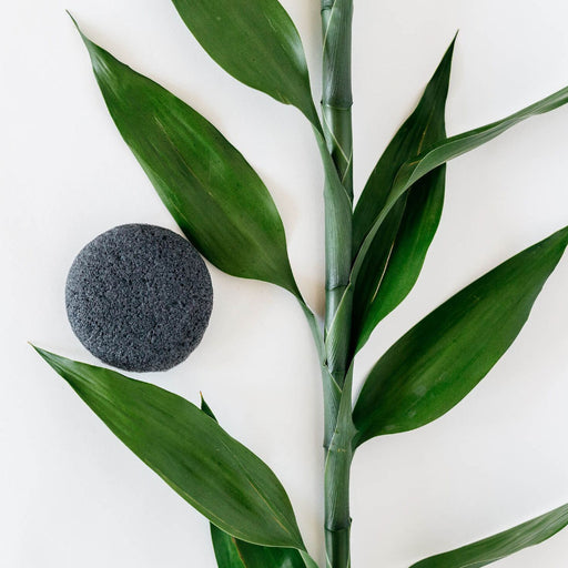 Graydon Konjac sponge with Bamboo Charcoal