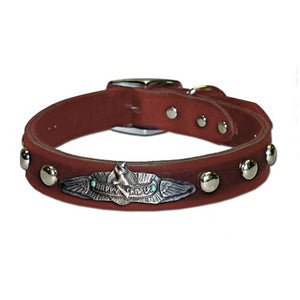 Happy Camper Collar in Black & Brown (Plain/Studded)