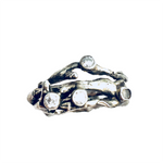 Silver Twigs Ring