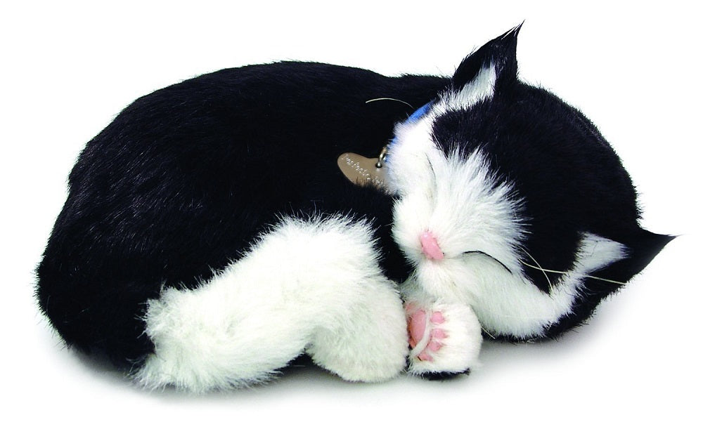 PERFECT BLACK&WHITE SHORTHAIR PLUSH BREATHING HUGGABLE ANIMAL CAT REAL KITTEN