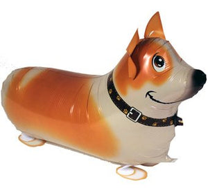 CORGI DOG WALKING BALLOON ANIMAL