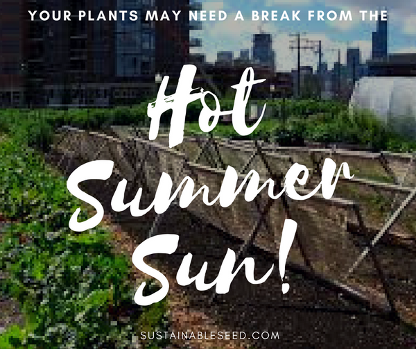 Your plants may need a break from the HOT  summer sun!