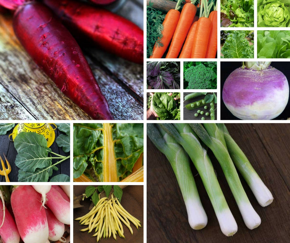 Veggies that will Grow in the Shade