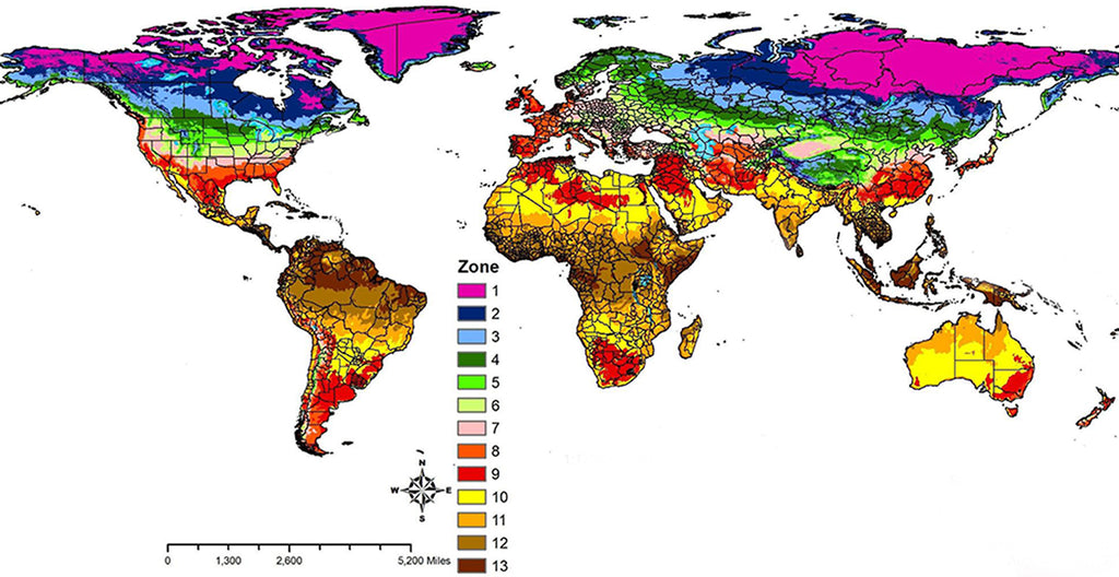 World Hardiness Zone Map