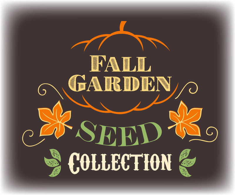 Fall Garden Seed Collection