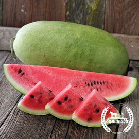 Charleston Grey Watermelon Seeds