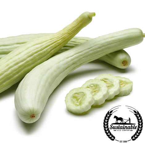 Cucumber Armenian (The Duke) Seeds - non-GMO