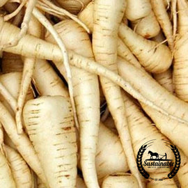 Harris Model Parsnip Garden Seeds