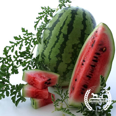 Organic Bush Jubilee Watermelon Garden Seeds