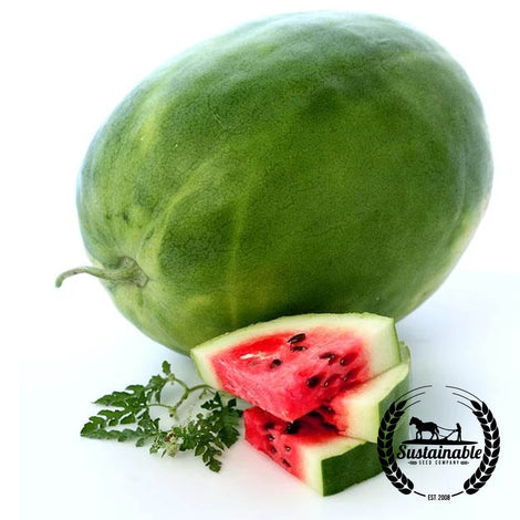Organic Calhoun Sweet Watermelon Garden Seeds