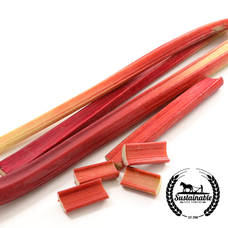 Organic Giant Red Celery Seeds - Non-GMO