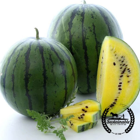 Organic Golden Honey Watermelon Seeds