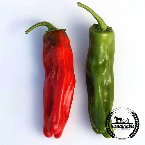 Organic Numex Sandia Pepper Seeds