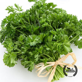 Parsley, Triple Curled Herb Seed