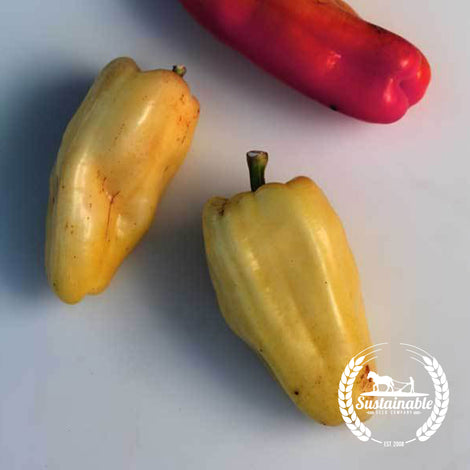 Antohi Romanian Pepper Seeds (250 mg)