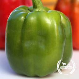 Organic Emerald Giant Pepper Seeds