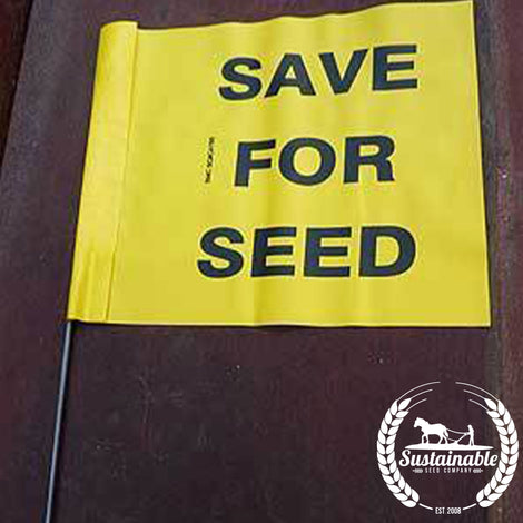 Save for Seed Flag