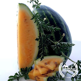 Tendersweet Orange Watermelon Seeds