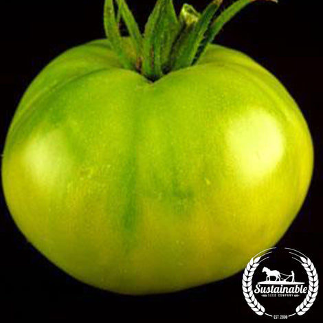 Aunt Ruby's German Green DF Tomato Seeds