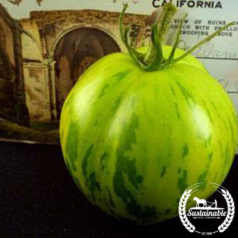Green Zebra DF Tomato Seeds