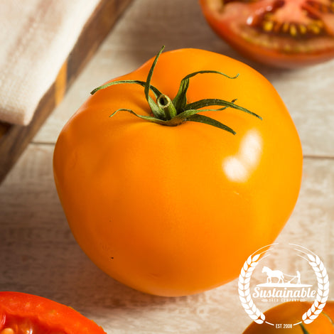Nebraska Wedding Tomato Seeds