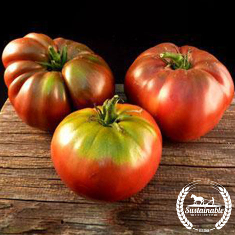 Pierce's Pride Tomato Seeds - Non-GMO