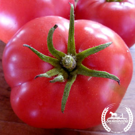Marizol Purple Tomato Seeds