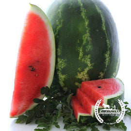 Cal. Sweet Supreme Watermelon Seeds