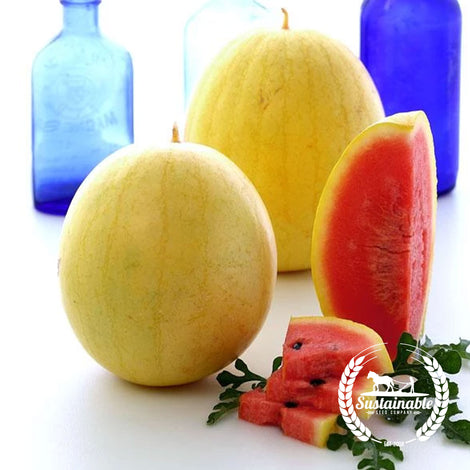 Organic Golden Midget Watermelon Seeds - Non-GMO