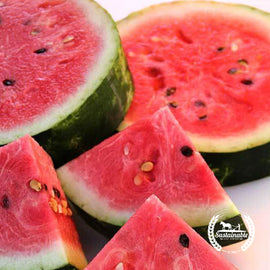 Legacy Watermelon Seeds