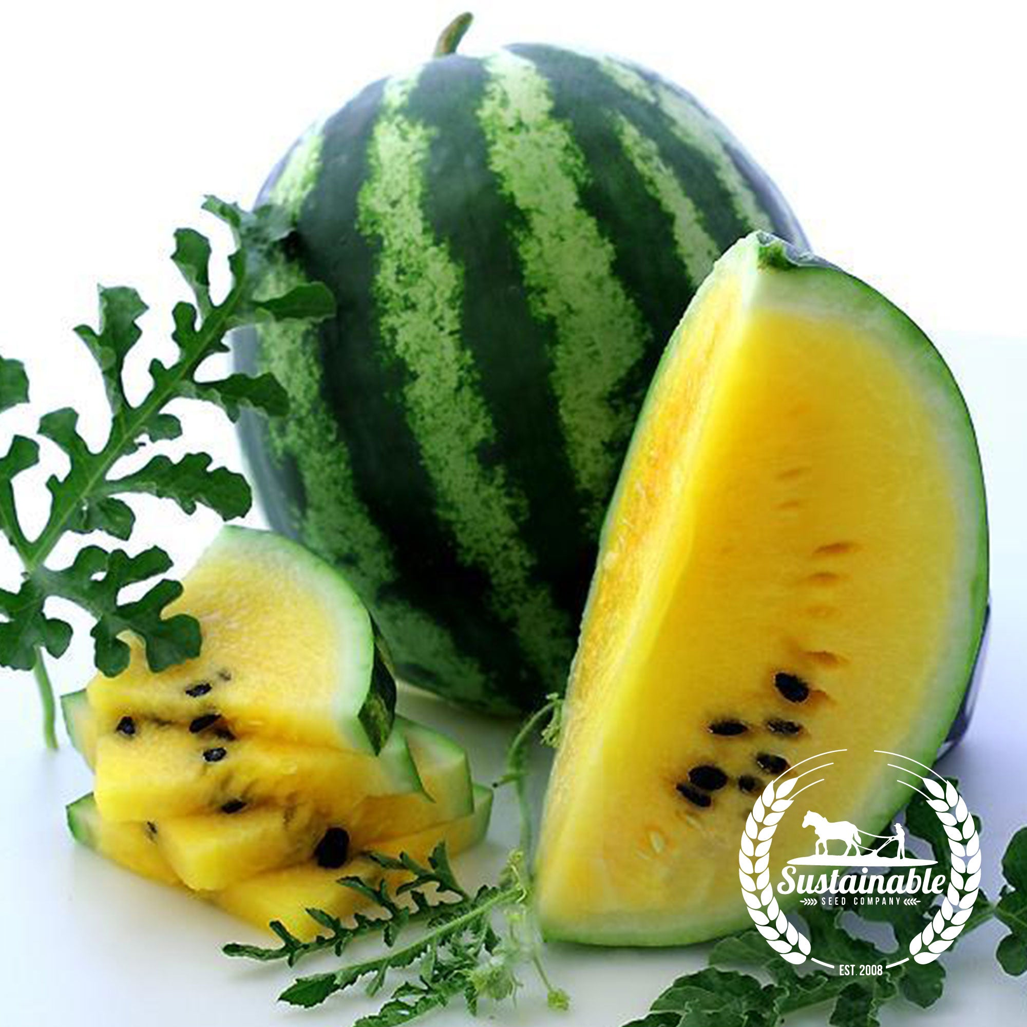 Yellow Petite Watermelon Heirloom Seeds Vegetable Seeds Sustainable Seed Sustainable Seed Company