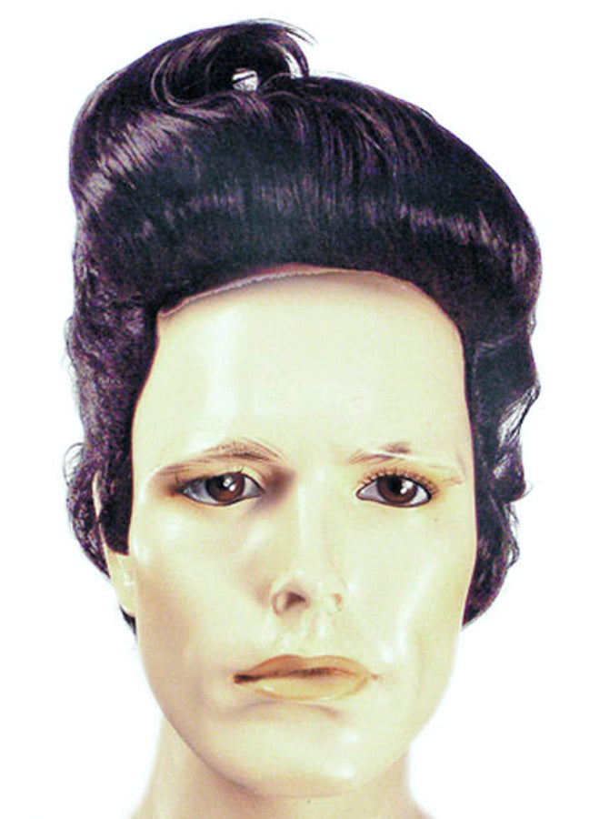 50's Costume, Ace Black Wig, Halloween Costumes, Wigs & Hair Costume