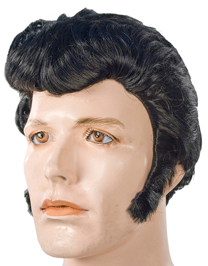 Elvi Sp Atp 381 Black Wig, Elvis Costume, Halloween Costumes, Wigs & Hair Costume