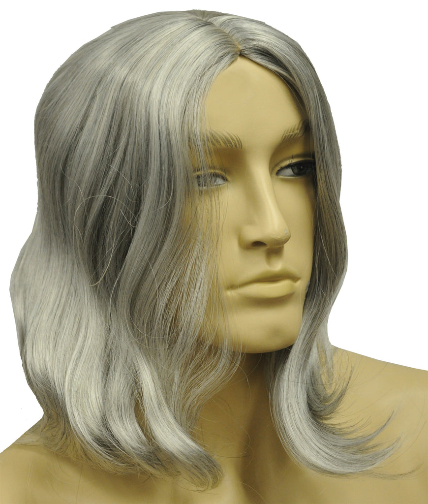 Biblical Deluxe Dark Brown Grey 5 Wig, Halloween Costumes, Holiday Costumes, Wigs & Hair Costume