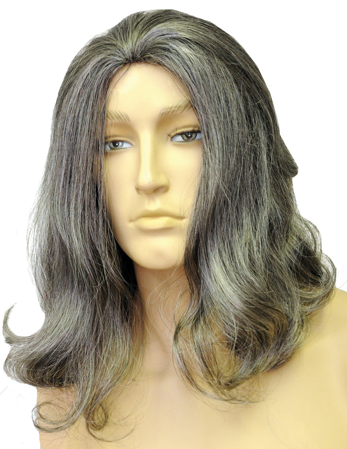 Biblical Deluxe Medium Brown Grey 44 Wig, Halloween Costumes, Holiday Costumes, Wigs & Hair Costume