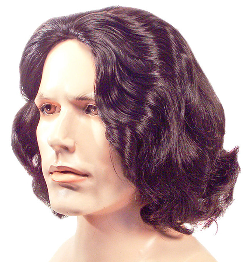 Beethoven Brown 6 Wig, Halloween Costumes