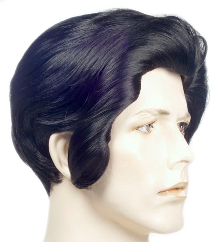 Elvi Black Wig, Elvis Costume, Halloween Costumes, Wigs & Hair Costume