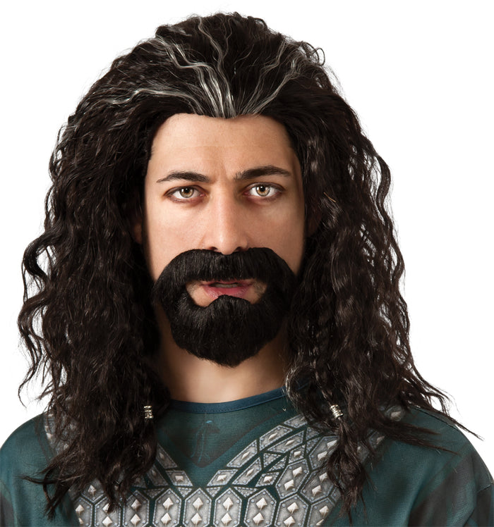 Halloween Costumes, Hobbit Thorin Wig & Hair Kit, Lord of the Rings Costume, white wig, Wigs & Hair Costume