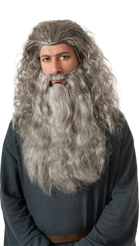Lord of the Rings Costume, Wigs & Hair Costume, Mustache & Beards Costume, Men's Costumes, Gandalf Wig & Beard Adult Costume Accessory Kit, Halloween Costumes