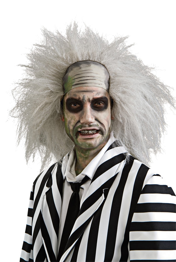 Beetlejuice Costume, Beetlejuice Wig, Halloween Costumes, white wig, Wigs & Hair Costume