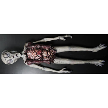 Alien Autopsy Prop - Decorations & Props Halloween costumes haunted house
