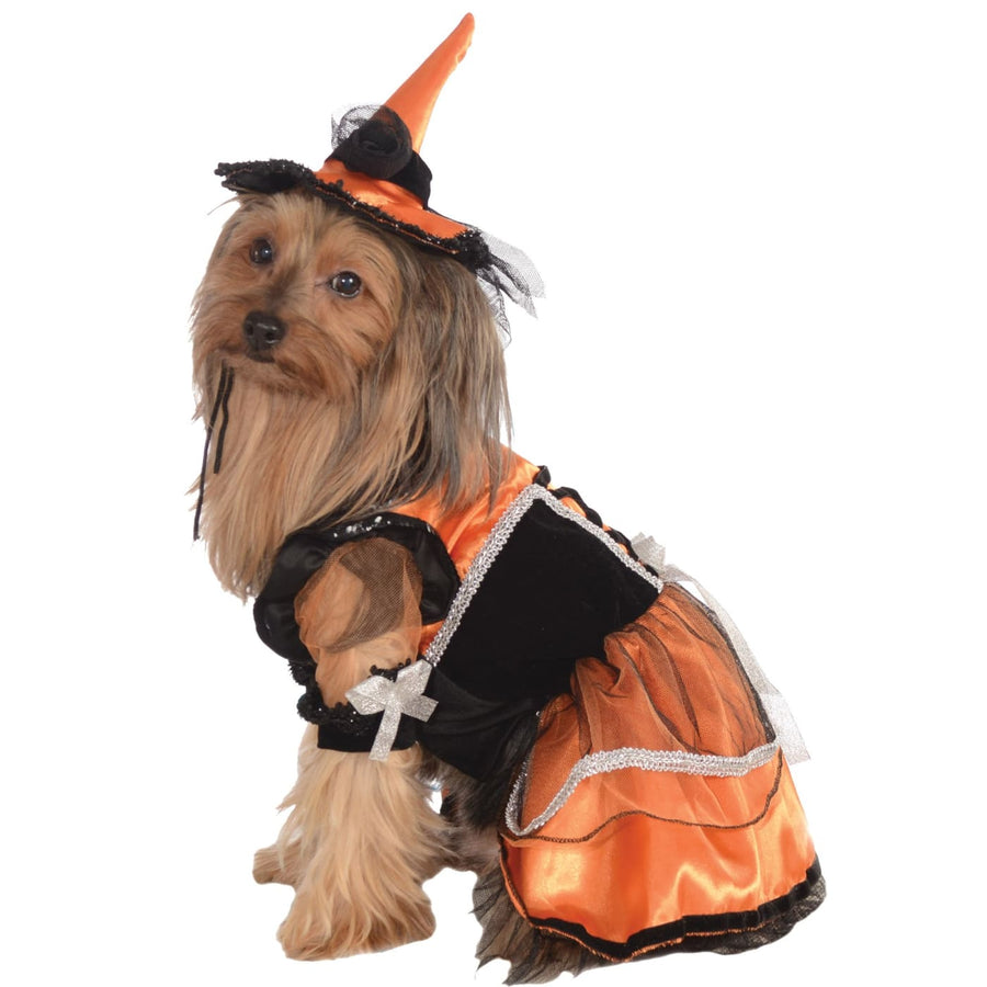 Cat & Dog Costume Orange Witch Lg - Dog Costume dog costumes Dog Halloween